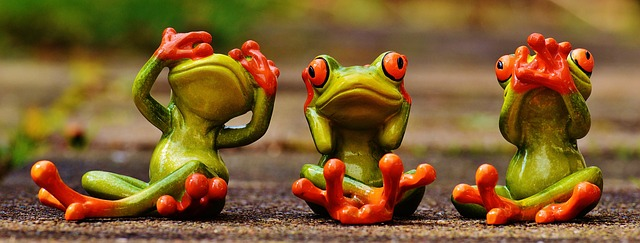 frogs-1274769_640