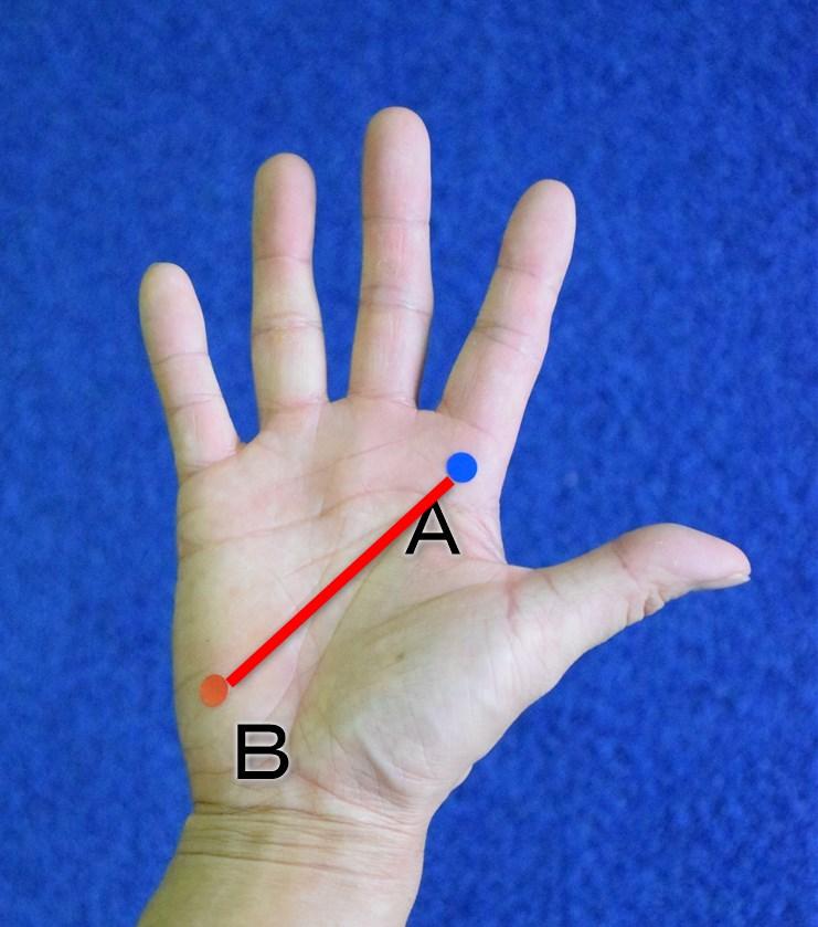 手の平の斜め線でグリップを握る