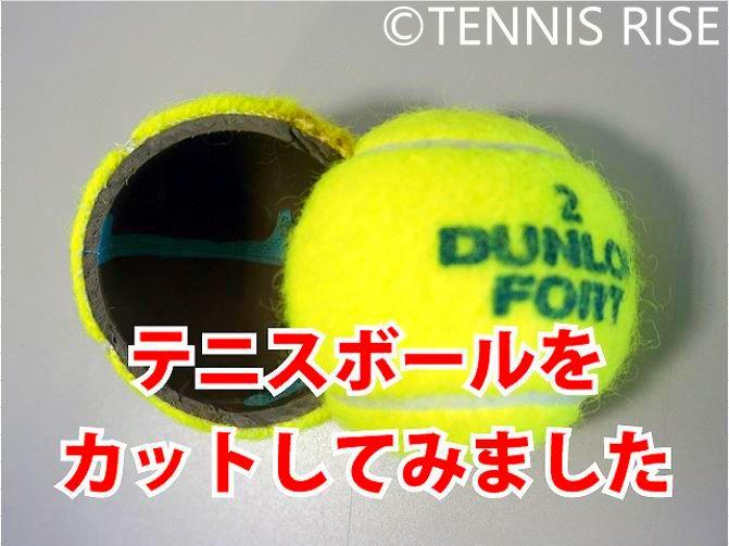 ボールの構造 テニスボール カット 半分
