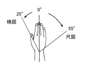 「手首撓屈尺屈の角度」の画像検索結果